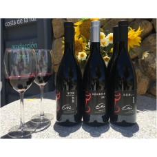 6 Red Wines from ETU, the best!